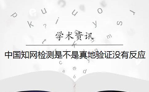 中国知网检测是不是真地验证没有反应