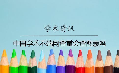 中国学术不端网查重会查图表吗?